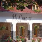 hoffmann (3)